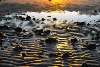 SunriseShore